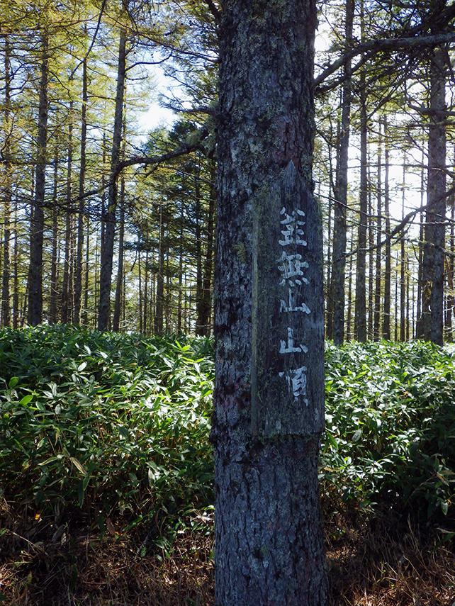 入笠山・釜無山